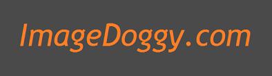 imagedoggy.png